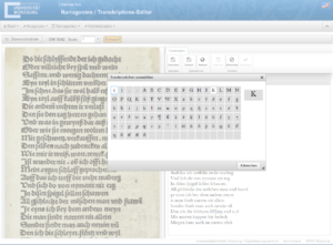 The synoptic transcription editor.